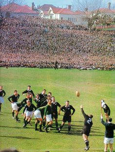 1956 - Blacks 17 / Boks 10 This picture shows Ron Jardin (No2) throwing the ball into the lineout. The Springboks in the picture are Chris Koch, Bertus van der Merwe (hands on knees), Johan Claassen, Salty du Rand, Jaap Bekker (head showing behind du Rand) Dawie Ackermann (hands on knees third from last), Daan Retief and Butch Lochner.