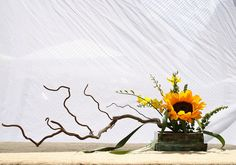 Ikebana I once loved making ikibanana, it was such an expressive medium. I wonder why I stopped?