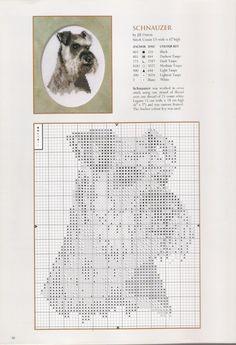 Schnauzer - Salt and pepper Gallery.ru / Фото - Jill Oxton`s Cross Stitch SE - 05 - lunaticlun Cross Stitch Charts, Cross Stitch Designs, Cross Stitch Patterns, Cross Stitching, Cross Stitch Embroidery, Embroidery Patterns, Dog Crafts, Crochet Cross, Dog Pattern