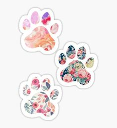 Floral Paw Print Trio Pegatina