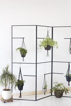 hanging plant room divider