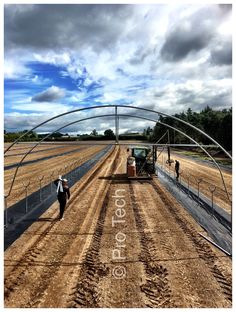 Strawberry polytunnels 50mm tube, Strawberry Spanish tunnels, strawberry gutters, strawberry tabletops , Staffordshire strawberry Greenhouse Plans, Greenhouse Gardening, Pvc Projects, Cold Frame, Spanish, Tube, Strawberry, Gardens, Plants