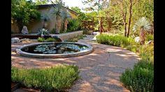Goodbye Lawn: Hello to Wildlife & Serene Courtyard Living   Central Texa...