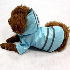 5 Colors Pet Dog Raincoat Waterproof Dog Clothes Reflective Stripe Puppy Hoodie Coat For Chi -hua -hua >>> Be sure to check out this awesome product. (This is an affiliate link) Vinyl Raincoat, Dog Raincoat, Raincoat Jacket, Yellow Raincoat, Dog Jacket, Hooded Raincoat, Rain Jacket, Cheap Raincoats, Raincoats For Women