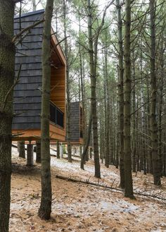 Cabañas campistas del parque regional Whitetail Woods,© Paul Crosby Photography