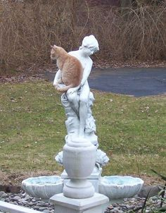 Ginger cat sat in the arms of a statue.