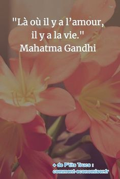 QuotesViral, Number One Source For daily Quotes. Leading Quotes Magazine & Database, Featuring best quotes from around the world. Citation Courage, Citation Gandhi, Mahatma Gandhi, Miracle Morning, Free Mind, Hope Quotes, Daily Quotes, My Mood, Powerful Words