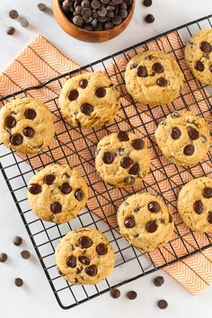 Pumpkin, chocolate, spice and everything nice. That's what these allergen free cookies are made of! Source by sarahbakesgfree Baking Chocolate Chip Cookies, Pumpkin Chocolate Chips, Chocolate Chip Oatmeal, Gluten Free Cookies, Gluten Free Baking, Vegan Gluten Free, Vegan Pumpkin, Pumpkin Pie Spice, Pumpkin Cookies