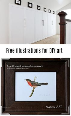 Huge resource for #free #art. 1000s of birds and animal drawings