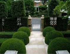47 Gorgeous Natural Garden Paths For Your Backyard Boxwood Landscaping, Backyard Landscaping, Fence Design, Patio Design, Modern Garden Design, Landscape Design, Landscape Architecture, Formal Gardens, Outdoor Gardens