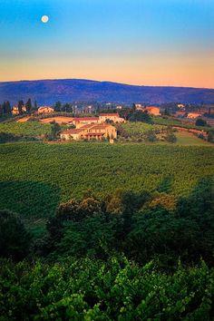 San Gimignano Vineyards - Siena, Tuscany, Italy