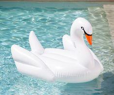 Happy Swanning