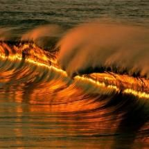 golden wave at sunset