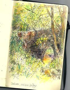 Viviens May sketches - coast - WetCanvas