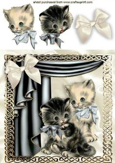 VINTAGE KITTEN IN SILVER ORNATE FRAME WITH DRAPES on Craftsuprint - Add To Basket!