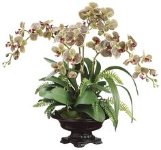 Phalaenopsis Orchid and Boston Fern Arrangement in Footed Bowl, Burgundy and Green, Home Office Decor Plant