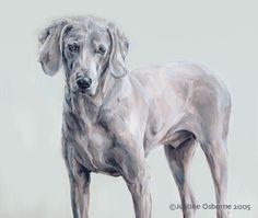 portraits of weimaraners Pencil Art Drawings, Animal Drawings, Dog Paintings, Weimaraner, Dog Portraits, Dog Art, Painting & Drawing, Pets, Artist