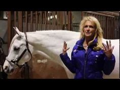 Everyone is caught up in Super Bowl hype these days, but the Arabian Horse Association has a unique angle on coverage of the worldwide football event. Kentucky Horse Park, Horse Videos, Horse Tips, All The Pretty Horses, Arabian Horses, Horse Art, Ponies, Thunder, In This Moment