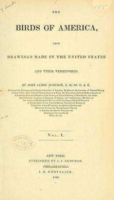 John James Audubon - The birds of America (1840)