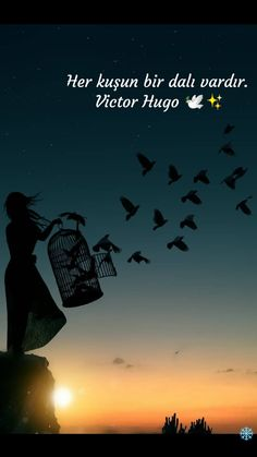 Victor Hugo, Instagram Story, Lonely, Best Quotes, Movie Posters, Movies, Life, Paisajes, Qoutes