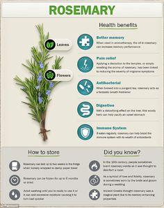 Herbs For Health, Healthy Herbs, Plant Health, Healthy Fats, Magic Herbs, Herbal Magic, Natural Health Remedies, Herbal Remedies, Natural Medicine
