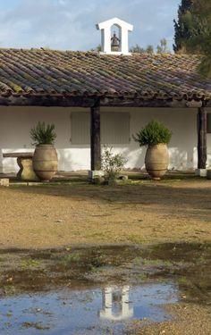 L'hôtel Cacharel aux Saintes Maries de la Mer Sainte Marie, Pergola, Outdoor Structures, Camargue, Nice Beach, The Visitors, Outdoor Pergola, Arbors, Pergolas