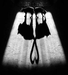 photographie artistique Aleksey Bedny noir et blanc(12)