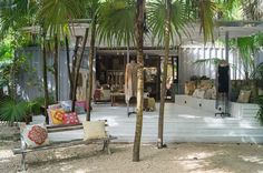Image result for tulum cenzontle