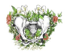 Where life is born . This is the last design of living anatomy, how not! finish with the female pelvis . Pelvis Anatomy, Flower Anatomy, Surealism Art, Garden Tattoos, Human Anatomy Art, Bone Tattoos, Skeleton Art, Medical Art, Medical Illustration