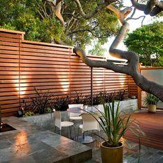 modern backyard, horizontal fence, big tree