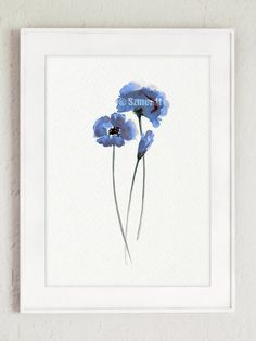 Blue Poppies Watercolor Painting set 4 Poppy by ColorWatercolor