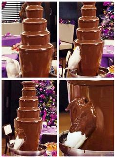 I think this bird has the right idea of how to use a chocolate fountain