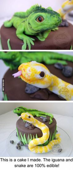 Sugar iguana and snake are delicious! This is a cake a made! Couldn´t believe my eyes when I finished them!