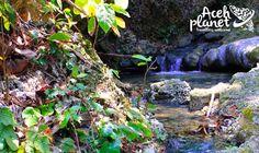 Aceh Planet – Pesona Keindahan Alam dan Sumber Mata Air Ujoeng Kareung