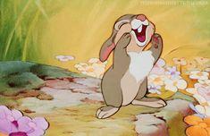 Thumper from Bambi! Disney Pixar, Disney Magic, Disney Cartoons, Disney Animation, Disney Art, Disney Characters, Cartoon Network, Cartoon Gifs, Cute Cartoon