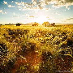 Gorgeous landscape shot in #Namibia.  | Explore Namibia: stories.namibiatourism.com.na |