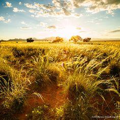 Gorgeous landscape shot in Namibia. BelAfrique your personal travel planner - www.BelAfrique.com