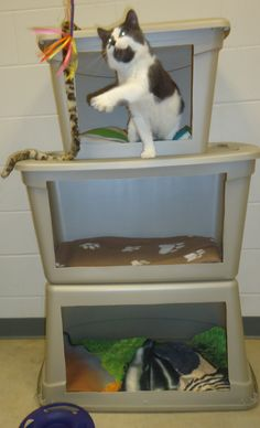 "Tip of the Week -  (ASPCA Blog)   Three plastic storage totes feature cut-out ""windows"" and have been bolted together to make an easy-to-clean tower—providing a place for play and a little privacy.  The perfect thing for an animal shelter!  Photo taken at Coulee Regional Humane Society, Onalaska, WI."