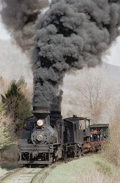 Cass Scenic Railroad, West Virginia, May, 1983