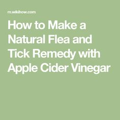 How to Make a Natural Flea and Tick Remedy with Apple Cider Vinegar