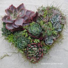 Design by Linda Estrin Garden Design.