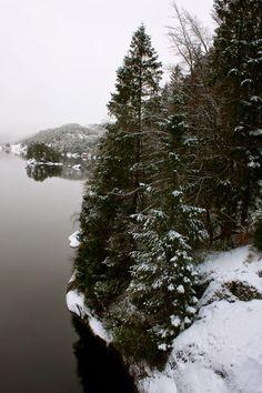 Korin Susanne: let it snow, let it snow, let it snow