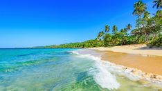 Travel Agents Share The Hottest Island Destinations, of which Jamaica is one!