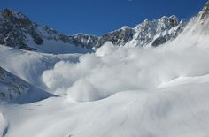 Image result for avalanche nz