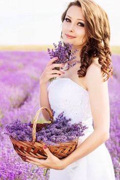 Beautiful bride posing at field of purple lavender with basket of flowers Lavender Cottage, Lavender Garden, Lavender Fields, Purple Garden, French Lavender, Lavender Flowers, Color Lila, All Things Purple, Beautiful Flowers