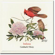 Indiana flower & bird