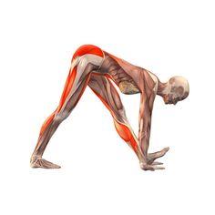 Intense arm left stretch pose - Parsvottanasana advanced left - Yoga Poses | YOGA.com