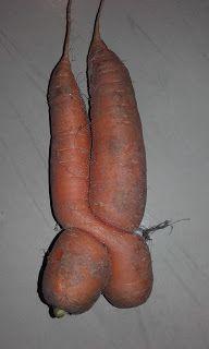 claire et cie: Connaissez-vous la recette de la soupe aux carotte...