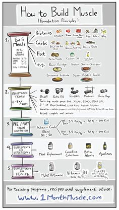 nutrition healthy food weight loss fitness tips How to Build Muscles - Foundation Principles. Remember to check my site out for more tips Fitness Workouts, Fitness Motivation, Lifting Workouts, Weight Training Workouts, Fitness Goals, Nutrition Crossfit, Nutrition Diet, Sports Nutrition, Crossfit Meal Plan