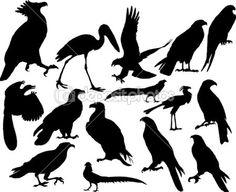 vektör kuşlar — Stok Vektör © angelp #3657730